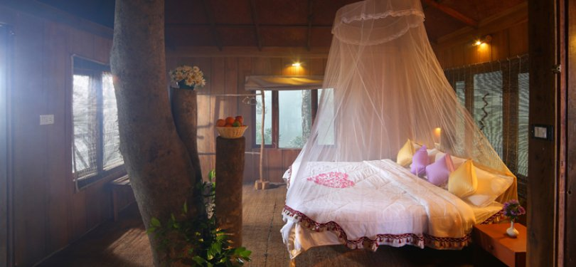 Nature Zone Resort Tree House Room