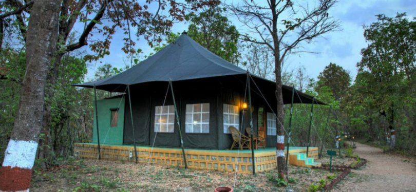 Pench Jungle Camp Tent