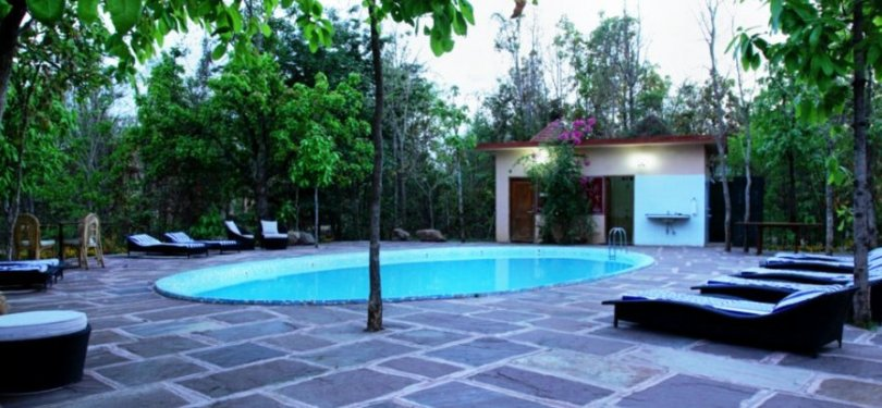 Pench Jungle Camp Pool