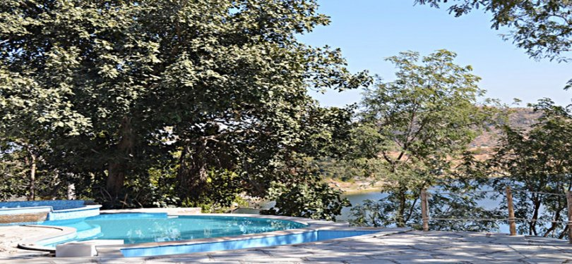 Kumbhalgarh Forest Retreat Scenic Forest View