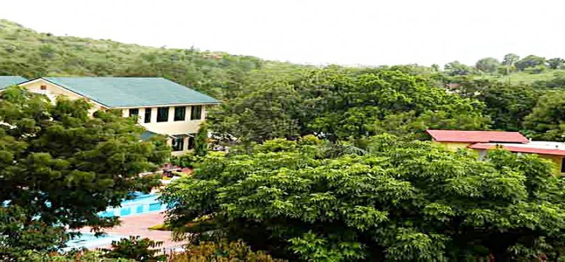 Jungle View of Amantra Shilpi Resort