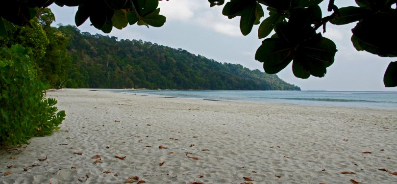 Havelock Island Radanagar Beach