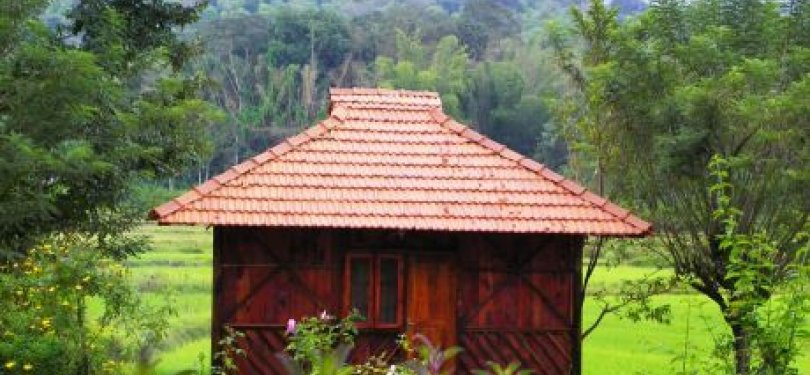 Jungle Retreat Wayanad Jungle Cottage