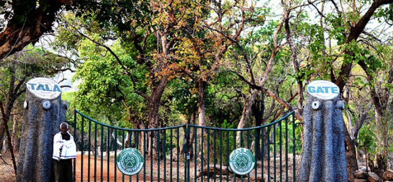 Entrance to Pench National Park