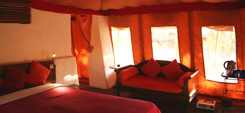 Monsoon Forest Tent Room