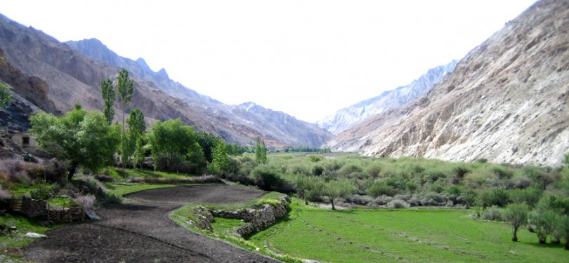 Fields on way to Markha valley