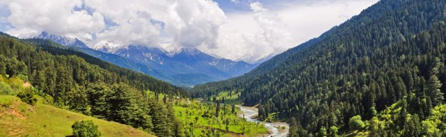 Beautiful View of Sonamarg