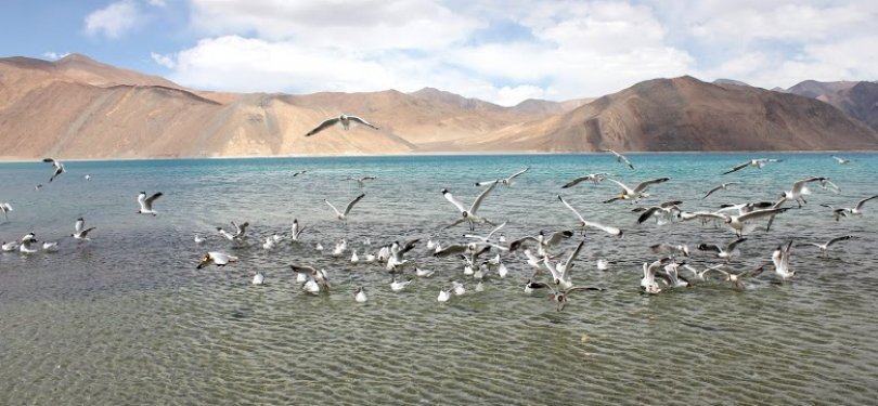 Wonders of Ladakh Pangong Lake