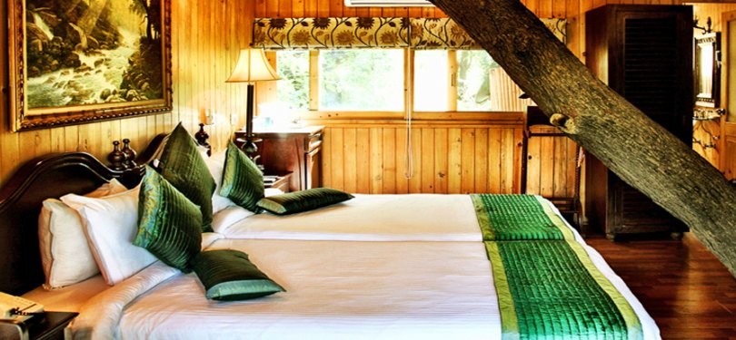 The Tree House Resort Luxury Cottage