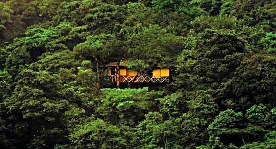 Tree Top Resorts in India