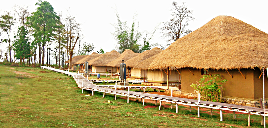 Bison Resort-Kabini
