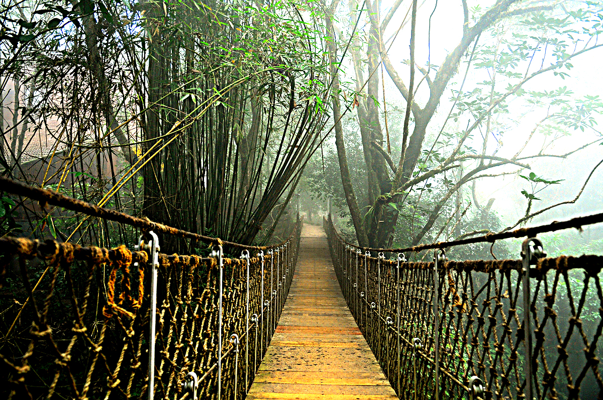 Hanging Bridge of Vythiri Resort Wayanad