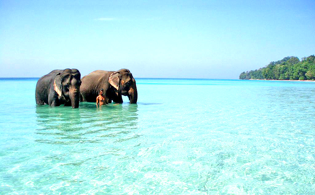 Havelock Island Andaman
