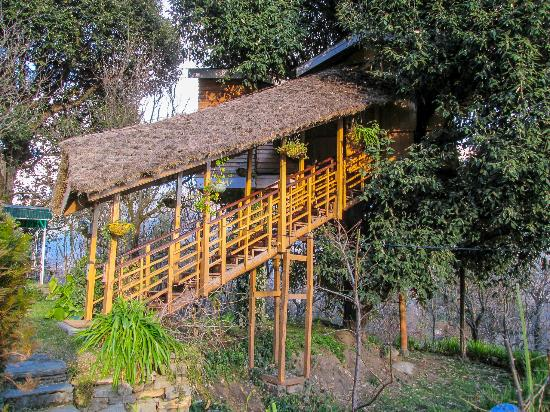Tree House Cottages Manali